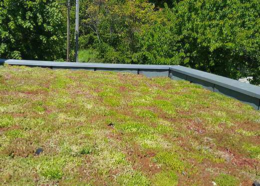 etancheite-toit-terrasse